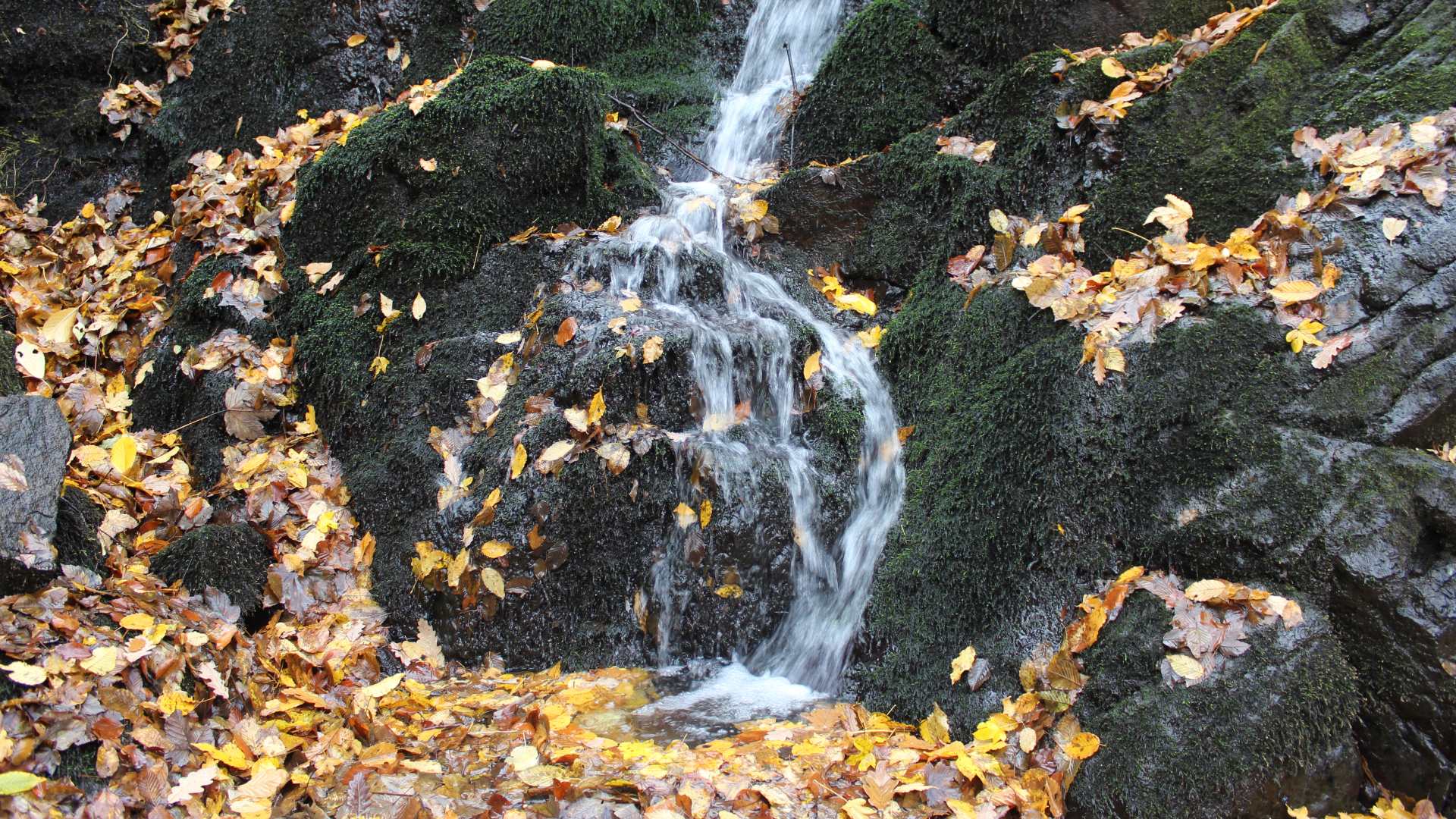 Vodopad na Radanu